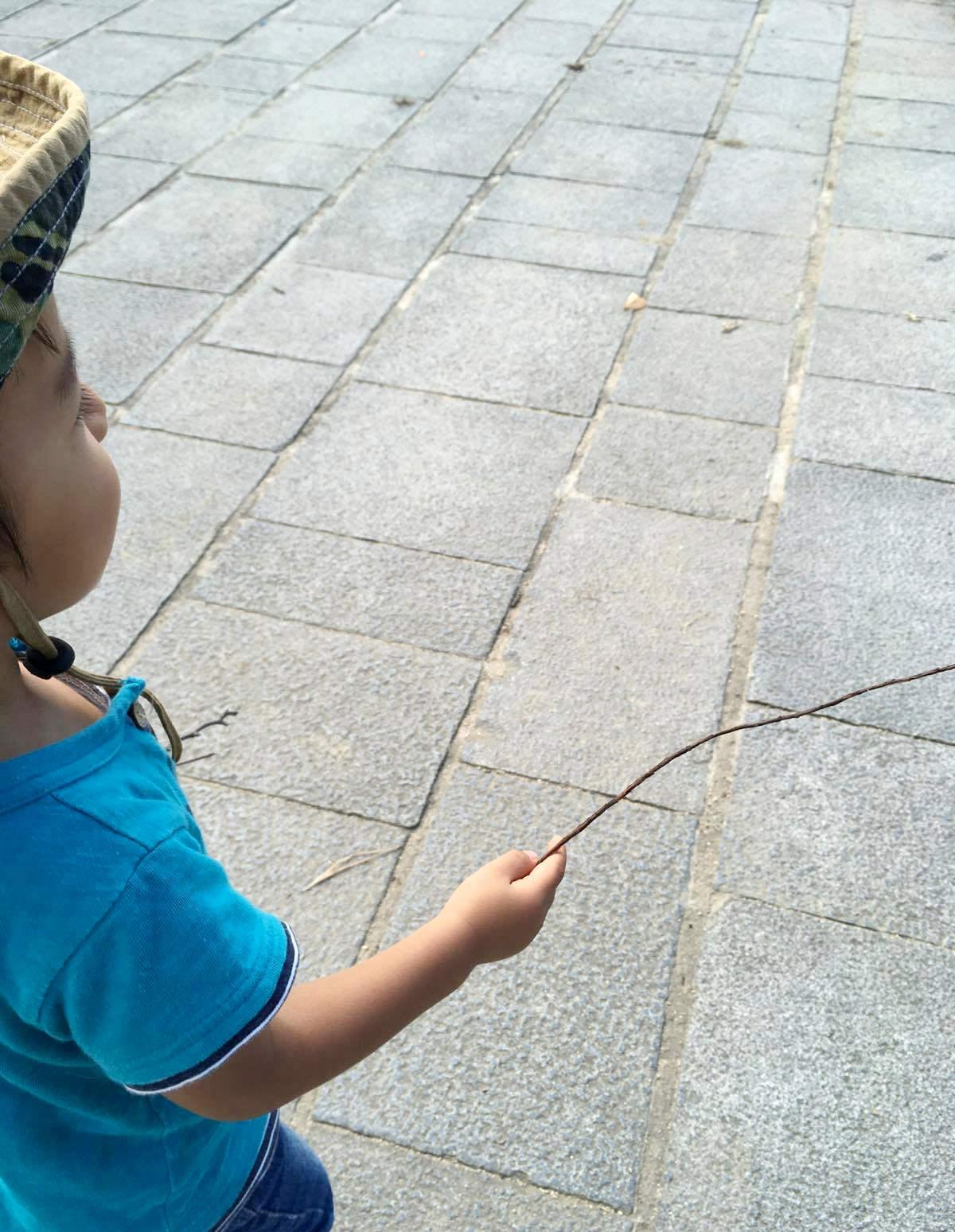 男の子はなぜ木の棒を拾うのか?